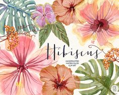Watercolor hibiscus flower, tropical leaves, jungle plants, monstera leaf, palm…
