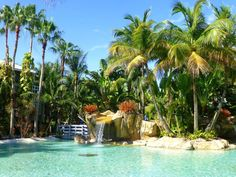 Love the tropical landscaping at Cheeca Lodge