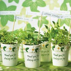 Miniature Flower Pots by Beau-coup.....love this idea.