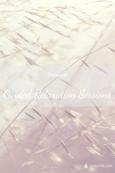 A guided relaxation session focused on the theme of the month, Renewal Relaxation Scripts, Guided Relaxation, Meditation For Beginners, Toned Abs, Motivational Speeches, Body Hacks, Meditation Quotes, Self Care Routine, Inspirational Quotes