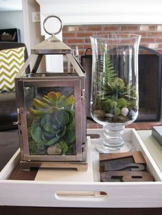 a succulent terrarium in a lantern! This is a great use for some of my wedding lanterns!: