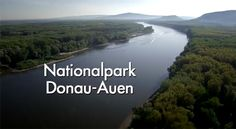 Vitajte v Národnom parku Donau-Auen River, Beach, Outdoor, National Forest, Outdoors, Seaside, Rivers, Outdoor Games