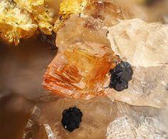 Leucophosphite, Rockbridgeite, Hureaulite | #Geology #GeologyPage #Mineral  Chemical Formula Leucophosphite : KFe3+2(PO4)2(OH)·2H2O Rockbridgeite : Fe2+Fe3+4(PO4)3(OH)5 Hureaulite : (Mn,Fe)5(PO4)2(HPO4)2·4H2O  Locality: Assunção Mine, Aldeia Nova, Ferreira de Aves, Sátão, Viseu District, Portugal  FOV: 2.33 mm  Photo Copyright © Pedro Alves  Geology Page www.geologypage.com