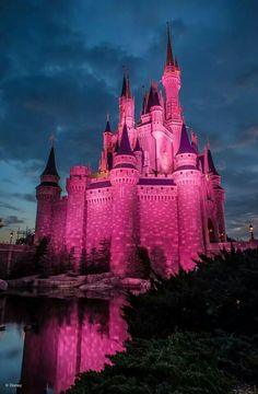 Walt Disney World in Orlando, FLA light up in pink... Cute and awsome