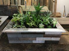 Reclaimed wood succulent/herb boxes Succulent Boxes, Succulents, Sustainability, Hardwood, Herbs, Plants, Natural Wood, Herb, Succulent Plants