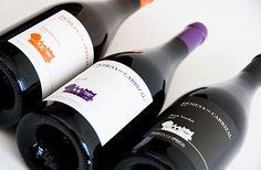 ¿A qué temperatura se debe servir un vino? | Dehesa Del Carrizal