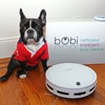 Browse all Instagram photos tagged with #bobsweep. View likes and comments. http://iconosquare.com/tag/bobsweep