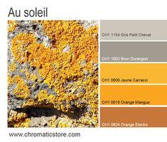 Cette harmonie contemporaine ensoleillera et réchauffera les espaces de vie, particulièrement s'ils sont privés de lumière naturelle. www.chromaticstore.com