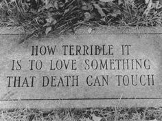 how terrible it is to love something that death can touch