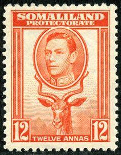 "Somaliland Protectorate (British Somaliland) 1938 Scott 91 12a orange ""Greater Kudu"""