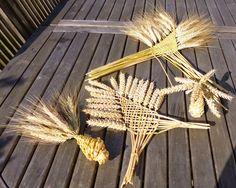 tressage épis de blé                                                       … …                                                                                                                                                                                 Plus