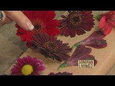How To Preserve Your Bridal Bouquet | Spring Flower Shop