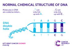 http://scienceblog.cancerresearchuk.org/2015/05/12/when-defences-attack-the-hidden-cause-of-cancer-hiding-in-our-cells/