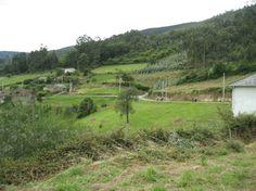 Xudan5 A Pontenova, Vineyard, Spain, Survival, Places, Outdoor, Fiestas, Outdoors, Vine Yard