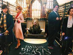 Sophie Reynolds // Fantastic Beasts Premiere