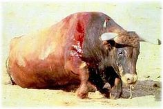 Spain, House of Representatives: Vote also AGAINST Bullfighting being of Cultural value!