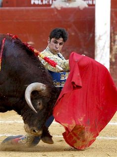 Francisco Rivera Ordoñez, torero