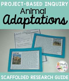 Teach your students how animals adapt and change to meet the needs of their environment with these quick research activities! Get them ready for inquiry!