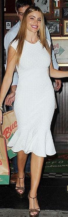 Sofía Vergara: Dress – Alexander McQueen  Purse – Chanel