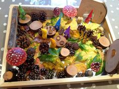 """Cute fairy world in a tray at Butterflies Childminding ("""",)"""