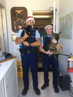 We're loving this photo of Constables Sam Crozier holding future Police Detector Dog Gyn and Michael