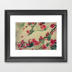 Buy Winter Berry by Olivia Joy StClaire as a high quality Framed Art Print. Worldwide shipping available at Society6.com. Just one of millions of products available.