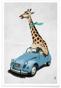 Riding high - Rob Snow | Creative - Premium poster