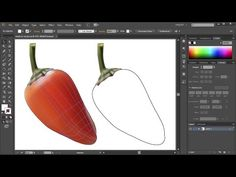 How to Convert a Mesh Object back to a Regular Path Object in Adobe Illustrator - Quick Tips - YouTube
