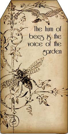 Bountiful Heirlooms: Free Printables: Bee and Beekeeping Tags