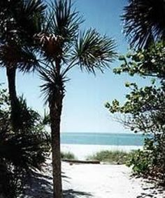 North Captiva Island House Rental: Island Oasis/hidden Beach House-private Pool | HomeAway