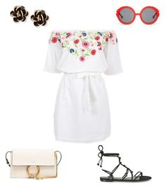 """""""Untitled #8"""" by michele204 on Polyvore featuring Rebecca Minkoff, Chloé, Chantecler, Pampelone and Preen"""