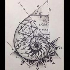 57 Ideas For Science Tattoo Ideas Sacred Geometry Golden Ratio Fibonacci Tattoo, Tatouage Fibonacci, Shell Tattoos, Body Art Tattoos, New Tattoos, Sleeve Tattoos, Side Body Tattoos, Tatoos, Ankle Tattoos