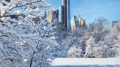 Gorgeous photos of New York in winter