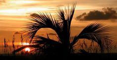 A Florida sunset