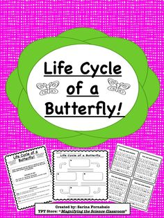 FREEBIE! Students use a graphic organizer to draw, label, and describe the life cycle of a butterfly.  Included are cut-and-paste description cards for struggling writers! Great for different levels of learners!