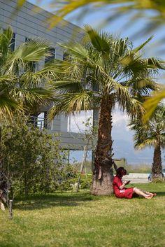 Dolores Park, Explore, Travel, Viajes, Destinations, Traveling, Trips, Exploring