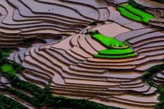 earth-song: Mu cang chai by Hai Thinh Belize, Chai, Lago Baikal, Travel Around The World, Around The Worlds, Earth Song, Rice Terraces, Pamukkale, Travel Images