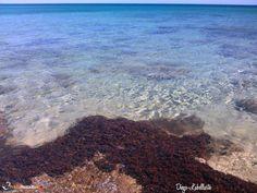 Monaco Mirante beach, San pietro in bevagna - Campo marino, Taranto