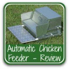 Grandpa's feeder - the best automated feeder on the market. Food For Chickens, Laying Chickens, Keeping Chickens, Automatic Chicken Feeder, Automatic Feeder, Chicken Roost, Chicken Garden, Backyard Chicken Coop Plans, Backyard Chickens