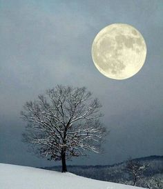 .Cold Christmas moon.