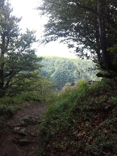 Chemin Kinder, le virage annonce la récompense #randonnée #sentier #GR5 #foret #montagne #chemin #paysage Country Roads, Landscape, Paths, Pathways, Drill Bit, Mountain, Scenery, Corner Landscaping