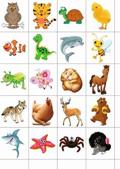 Understand Shichida Flashcards Benefits on your Beautiful Gifted Kid Zoo Activities Preschool, Toddler Activities, Preschool Activities, Diy Quiet Books, Gifted Kids, Stuffed Animal Patterns, Science For Kids, Teaching Kids, Art Images