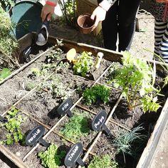 Backyard gardening  Så fik vi etableret højbede sået&planter samt båret en masse jord! Altsammen i fælleskab med naboer og andet godtfolk #baghave #køkkenhave #dyrkselv #byhave #urbangardencompany #vesterbro #urbangarden #copenhagen