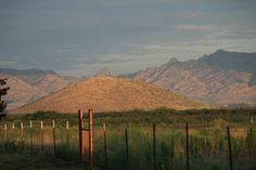Arizona Summer Deal $595WK ~SE Arizona Mt Summer Ranch Getaway at Hummingbird Ranch Vacation House in Pearce AZ.  ~Enjoy our cooler Mt Breeze Summers w/ 360 Mt Views, 3 Ghost Towns and 2 National Parks. http://vacationhomerentals.com/68121