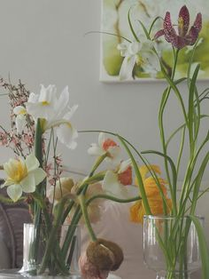 Mansikkatilan mailla: Pääsiäiskukkia I Marimekko, Glass Vase, Plants, Home Decor, Decoration Home, Room Decor, Plant, Home Interior Design, Planets
