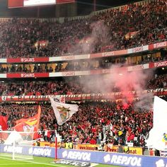 Estádio do Sport Lisboa e Benfica • Fotos e vídeos do Instagram