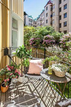 tiny Terrace = little urban garden room....