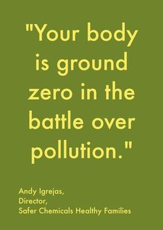 """Your body is ground zero in the battle over pollution."" -Andy Igrejas (quotation source: http://youtu.be/PVB6XSyBTVE )"
