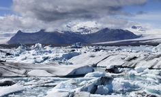Iceland, Campsite for Wildlings