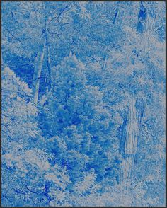 Harmonium 072  by Clifford Ross